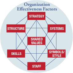Organization Effectiveness Factors